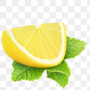 Lemon - Lemon Lime Stock Photography Cocktail Garnish Poppy Seed PNG