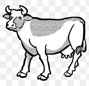 Cow Head - Texas Longhorn Line Art Drawing Clip Art PNG
