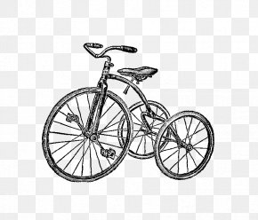 Tricycle Pictures - Tricycle Drawing Bicycle Photography Clip Art PNG