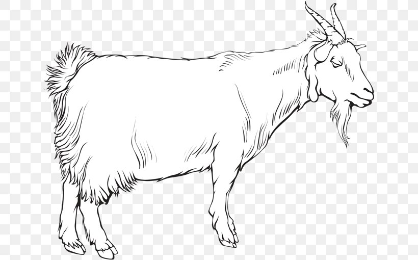Cattle Ox Goat Sheep Line Art, PNG, 650x510px, Cattle, Animal, Animal Figure, Artwork, Black And White Download Free