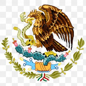 Coat Of Arms Of Mexico Flag Of Mexico Stock Photography PNG