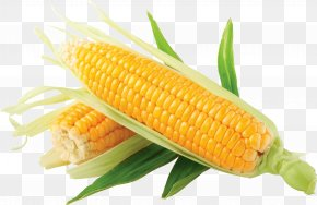 Corn Image - Maize Corn On The Cob Clip Art PNG