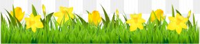 Grass With Daffodils Clipart - Flower Stock Photography Euclidean Vector Clip Art PNG