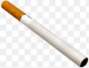 Cigarette - Cigarette Tobacco Plants PNG