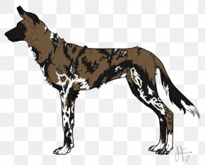 Wild Dog - Dog Breed Great Dane African Wild Dog Dhole PNG