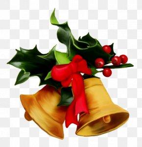 Christmas - Christmas Tree Mistletoe Christmas Decoration Gift PNG