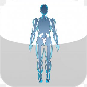 Human Body - Arm Human Body Graphic Design Hip Joint PNG