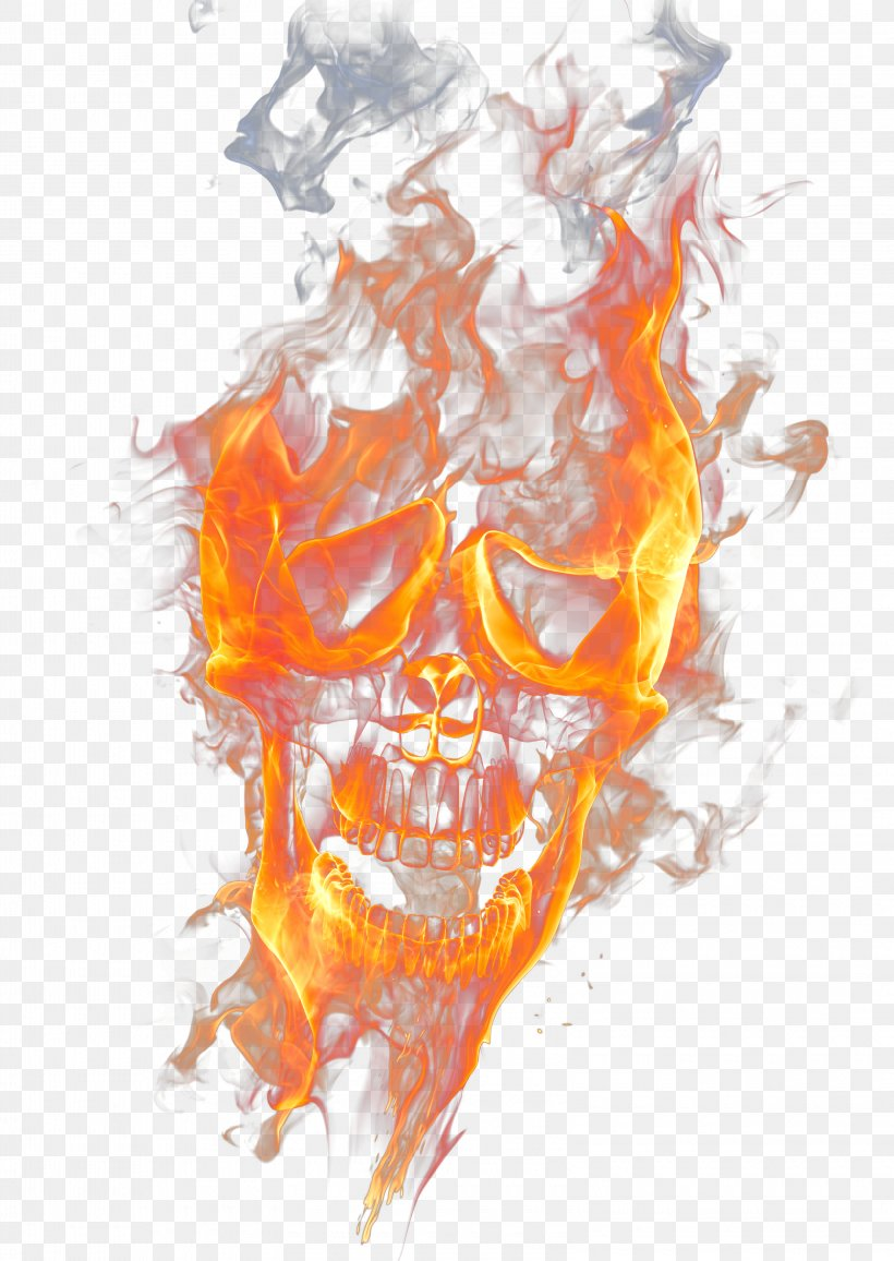 Skull Fire Flame Wallpaper Png 3200x4514px Watercolor