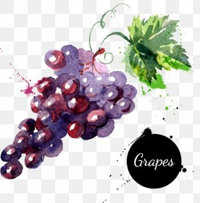 Cartoon Fruit Grapes Hand-painted Watercolor - Grape Watercolor Painting Drawing Royalty-free PNG