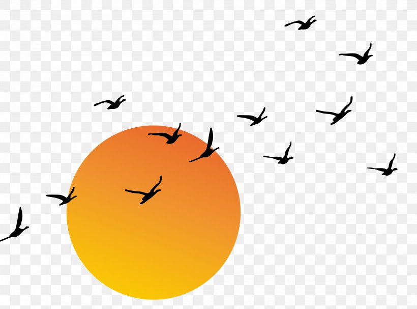 Sunset Euclidean Vector Png 4689x3472px Sunset Computer Graphics Dessin Animxe9 Orange Sky Download Free