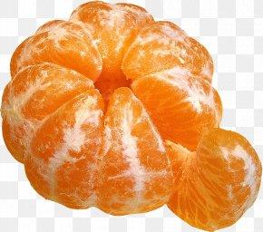 Orange - Orange Juice Mandarin Orange Tangerine Satsuma Mandarin Fruit Salad PNG