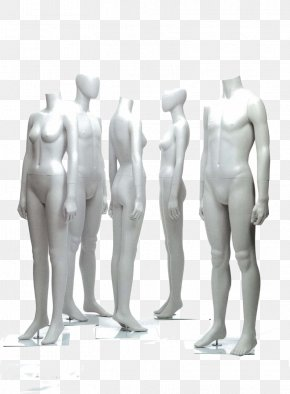 Human Body Model - Mannequin Human Body Art Model PNG