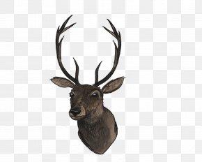 Deer Head File - Reindeer Clip Art PNG