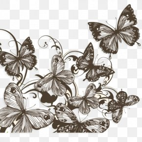 Butterfly Sketch - Butterfly Drawing Photography Shutterstock PNG