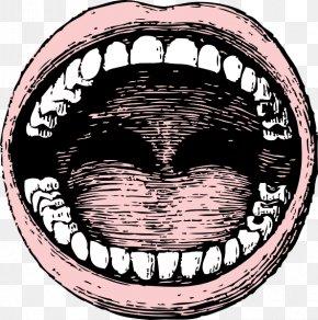 Open Lips - Mouth Lip Clip Art PNG