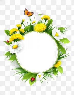 Flowers Title Box - Common Dandelion Euclidean Vector Flower Common Daisy PNG