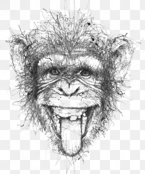 Black And White Lines Stitching Monkeys - Artist Doodle Drawing Illustration PNG