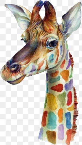 Watercolor Giraffe - IPhone 6 Plus IPhone 5 IPhone 4S IPhone 7 PNG