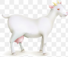 Vector Cartoon Goat Painted - Goat Sheep Cattle Livestock PNG