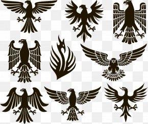 Eagle Illustration - Eagle Heraldry Stock Photography PNG