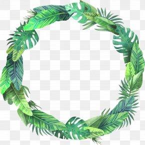 Summer Bush Leaves - Leaf Euclidean Vector PNG