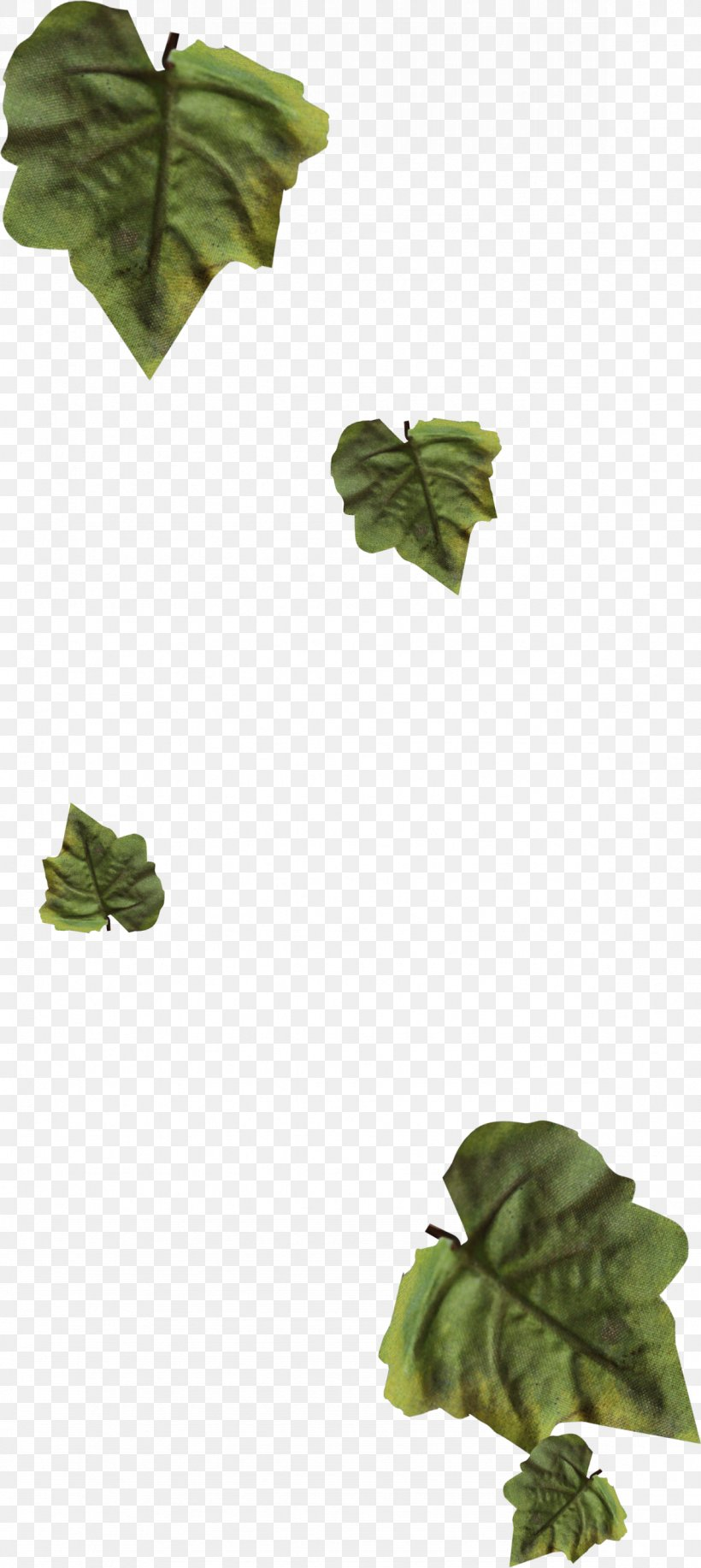 Leaf Garland Wreath Drawing Png 1181x2640px Leaf Advertising Autumn Brown Drawing Download Free