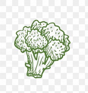 Broccoli - Broccoli Cauliflower Vegetable Computer File PNG