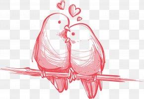 Love Birds Images Love Birds Transparent Png Free Download