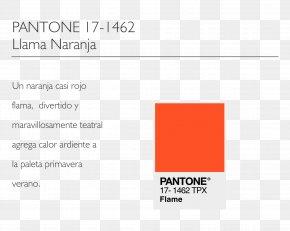 Color Pantone - Document Product Design Logo Brand Line PNG