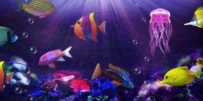 Free! Desktop Wallpaper WallpaperAquarium - Elements 0 Candy PNG