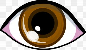 Brown Cliparts - Eye Brown Clip Art PNG
