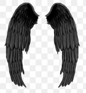 Black Evil Wings - Wing Devil Black And White PNG