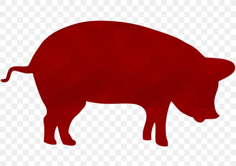 Pig Roast Barbecue Reading Terminal Market Logo, PNG, 852x600px, Pig, Barbecue, Cattle Like Mammal, Fauna, Food Download Free
