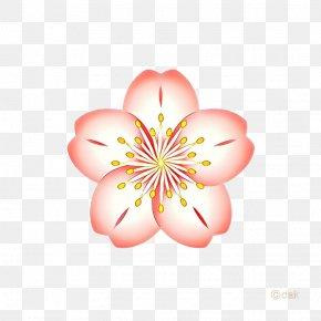 Hibiscus Wildflower - Pink Flower Cartoon PNG