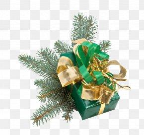 Christmas Gift - Santa Claus Christmas Decoration Gift Christmas Ornament PNG