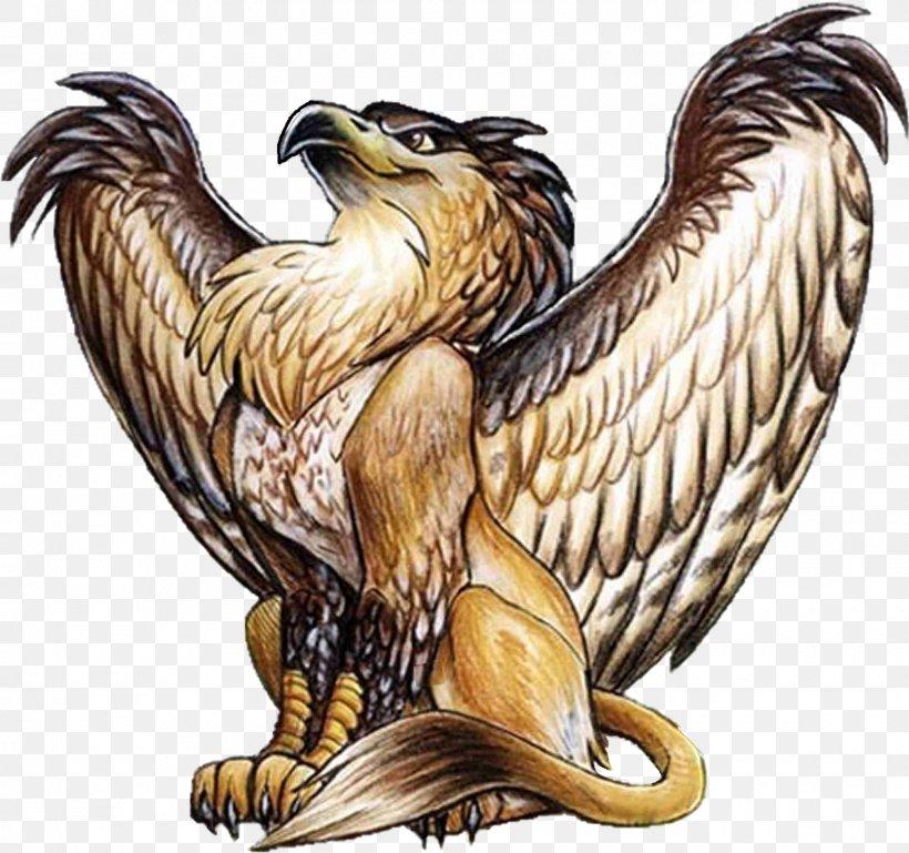 Griffin Lion Legendary Creature Dragon Werewolf, PNG, 1600x1502px, Griffin, Accipitriformes, Bald Eagle, Beak, Bird Download Free