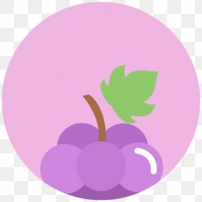 Grape - Fruit Common Grape Vine Berry PNG