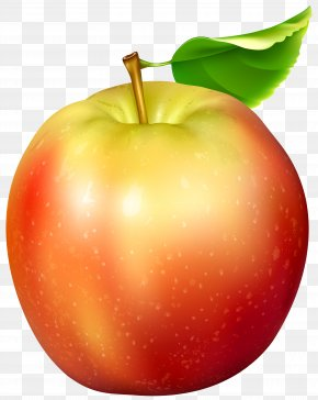 Red And Yellow Apple Transparent Clip Art Image - Apple Clip Art PNG