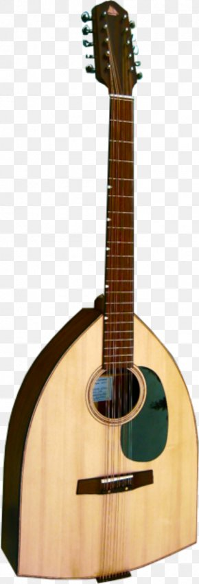 Wedding Bell Picture - Martin D-28 C. F. Martin & Company Acoustic Guitar Dreadnought PNG