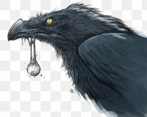 Crow - Darksiders III The Art Of Darksiders II Video Game PNG