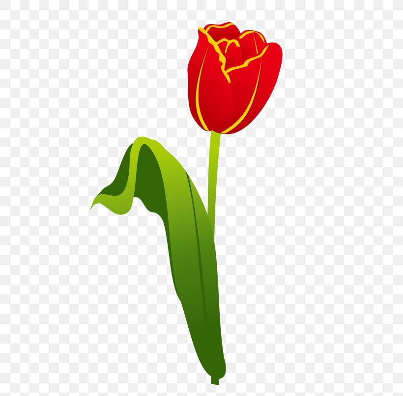 Garden Tool Gardening Landscaping, PNG, 510x807px, Garden Tool, English Landscape Garden, Flower, Flower Garden, Flowering Plant Download Free