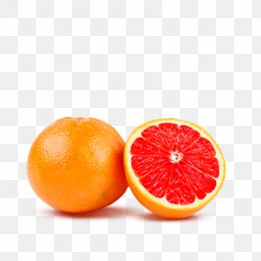 Orange Image, Free Download - Juice Blood Orange Tangerine Lemon PNG