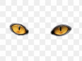 Eyes Png Image - Cat's Eye PNG
