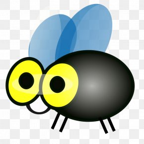 Cartoon Picture Of A Fly - Mosquito Free Content Clip Art PNG