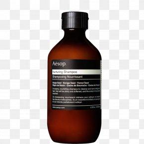 Shampoo - Aesop Shampoo Hair Conditioner Cosmetics PNG