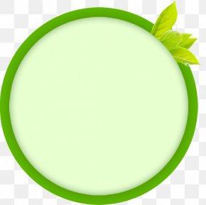 Green Circle - Circle Download Computer File PNG