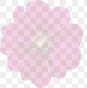 Herbaceous Plant Plant - Petal Pink Flower Plant Herbaceous Plant PNG