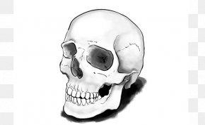 Skull - Drawing Skull Calavera Tutorial Art PNG