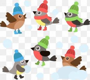 Vector Cartoon Bird With A Winter Hat - Bird Hat Euclidean Vector PNG