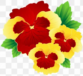 Red And Yellow Pansies Clipart Image - Flower Yellow Red Clip Art PNG